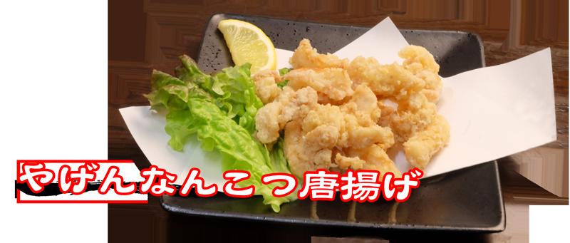 menu_agemono_nankotu